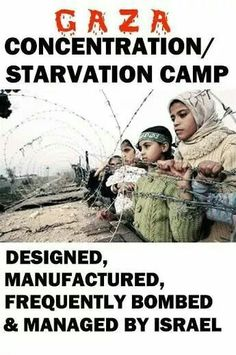 PI Gaza now
